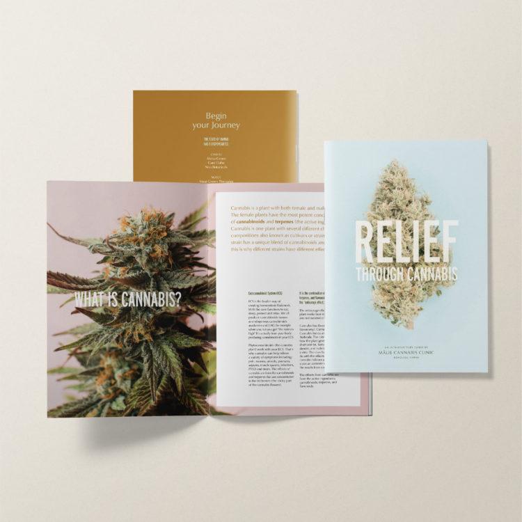 Alia Cannabis Brochure Design
