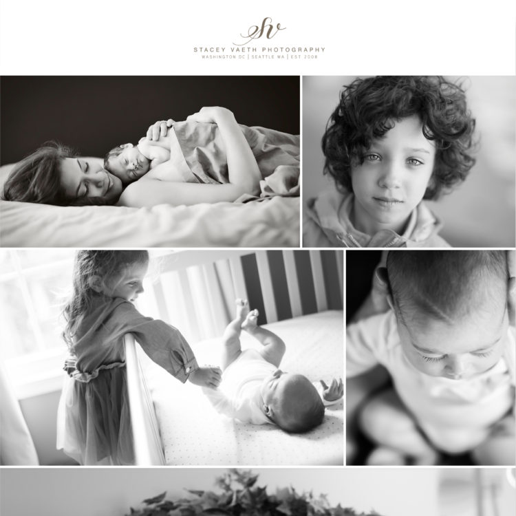 Stacey Vaeth Photography- Family Gallery Section